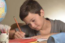 オンライン家庭教師を効率よく利用するコツ!海外で「日本語学習」したいなら必見!