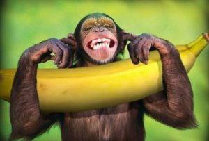 人種差別 バナナ 意味