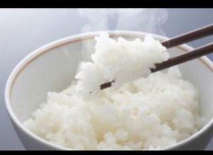 白米が好きすぎる